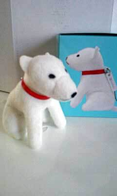 Softbankdog