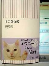 Nekoiwagou_1